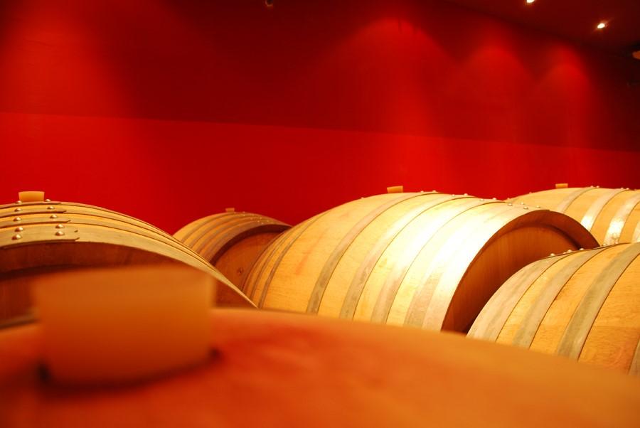 Le chai de vinification des vins